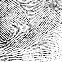 evidence-fingerprints-analysis400