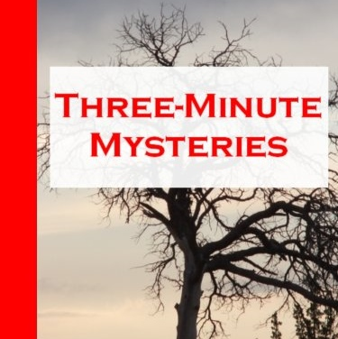 Three-Minute Mysteries by Stephen D. Rogers
