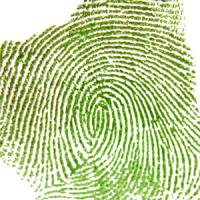 Analysis of fingerprints found at the victim's residence