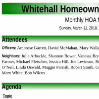 As promised, Mary provided her raw notes from the Mach 11th Whitehall HOA meeting