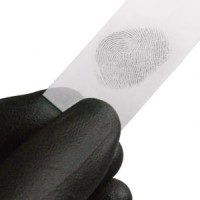 Updated fingerprint identification information