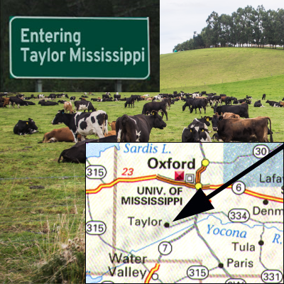 Entering Taylor MS sign and map showing location of Taylor with cows in a pasture in the background