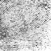 Fontaine crime scene fingerprints