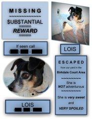 Lois-Preston-missing.jpg