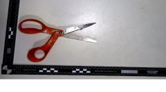 002641-43: One (1) pair of scissors