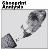 Shoeprint analysis
