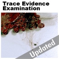 Updated analysis of trace evidence from the scene