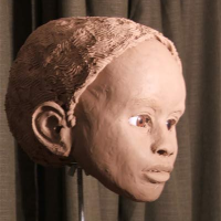 Clay Reconstruction