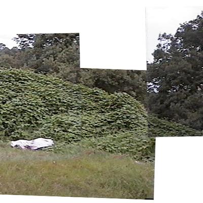 Body scene panorama